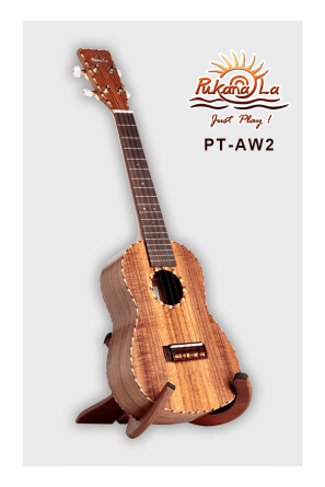 PT-AW2-03