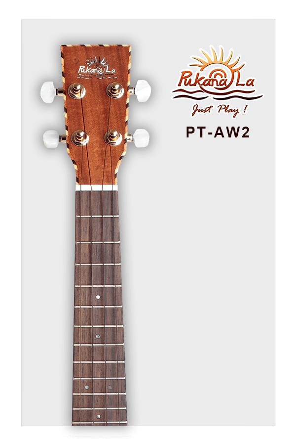 PT-AW2-05