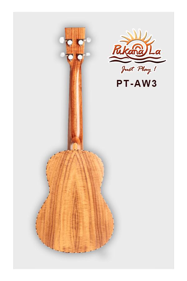PT-AW3-02