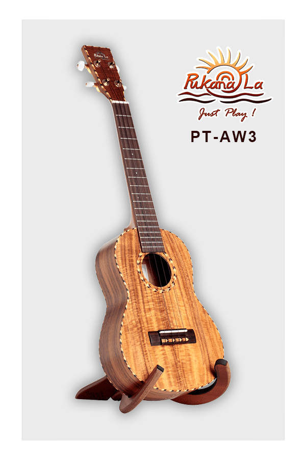PT-AW3-03