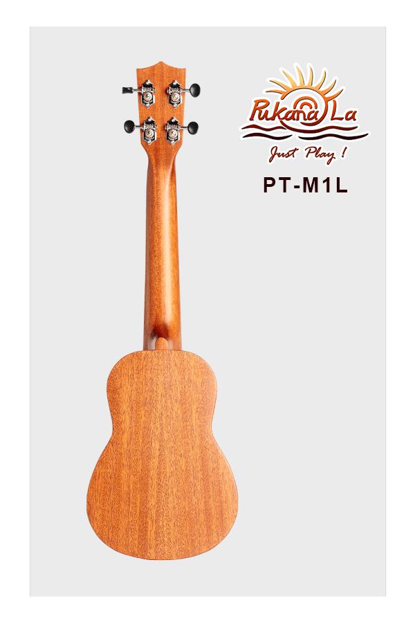 PT-M1L-02