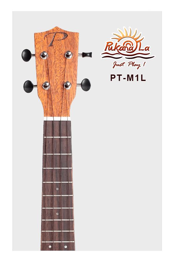 PT-M1L-05