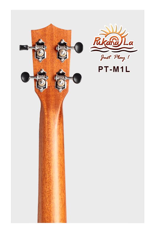 PT-M1L-06