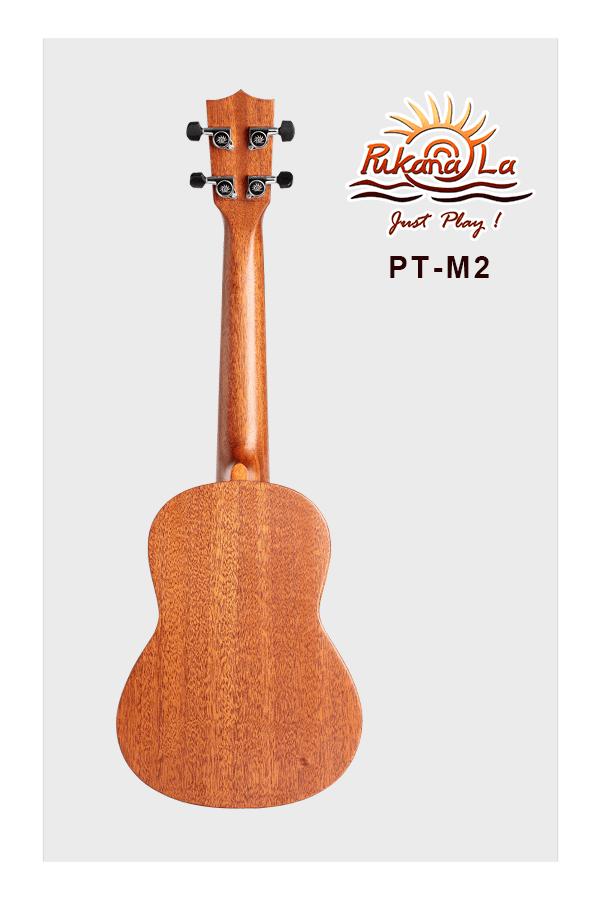 PT-M2-02