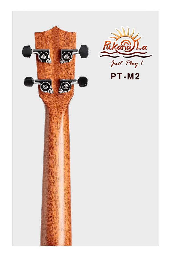 PT-M2-06