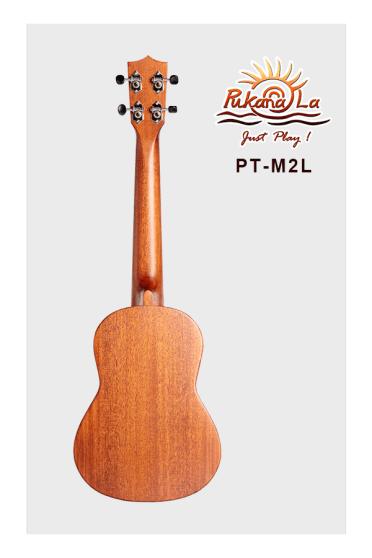 PT-M2L-02