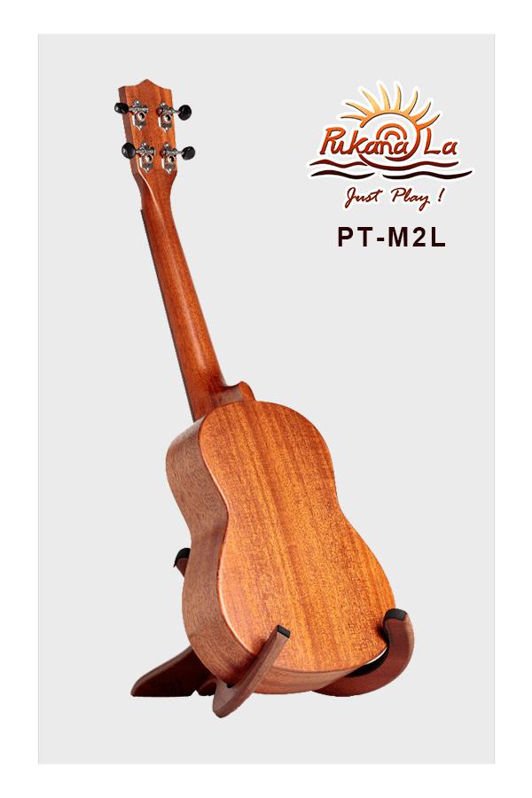 PT-M2L-04