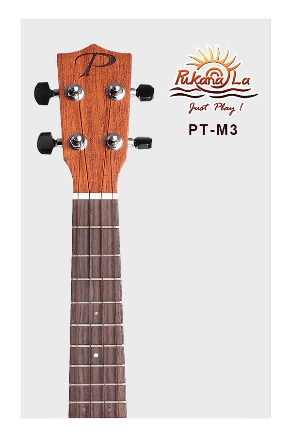 PT-M3-05