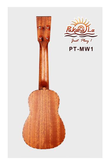 PT-MW1-02