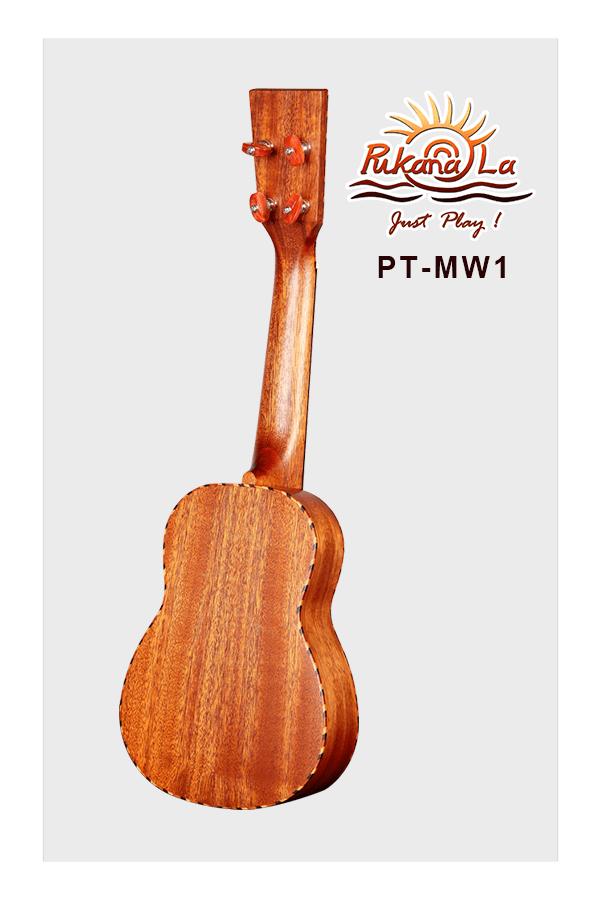 PT-MW1-04