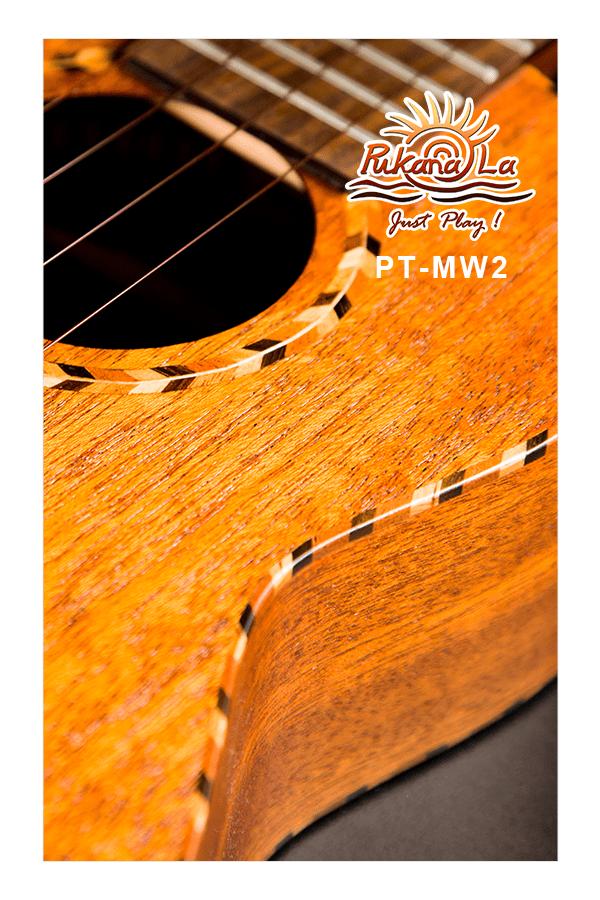 PT-MW2-07