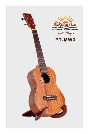 PT-MW3-03
