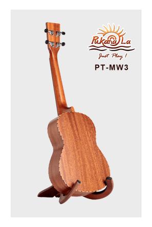 PT-MW3-04