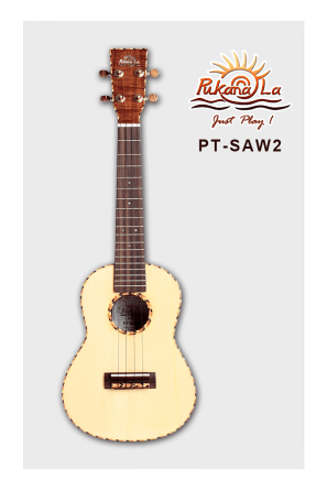 PT-SAW2-01