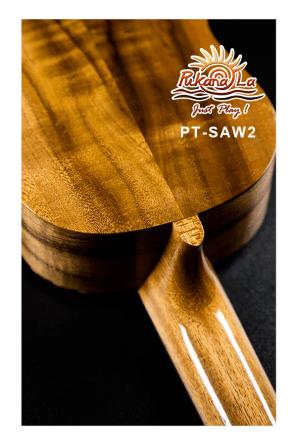 PT-SAW2-07