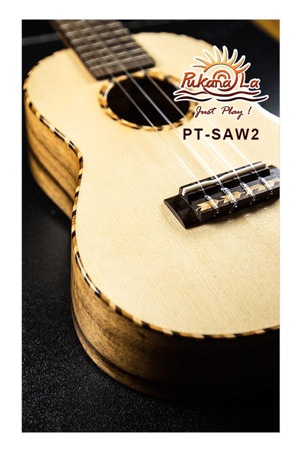 PT-SAW2-09
