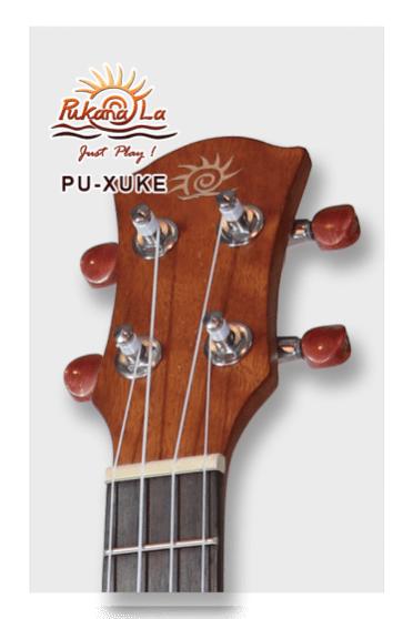 PU-XUKE-11