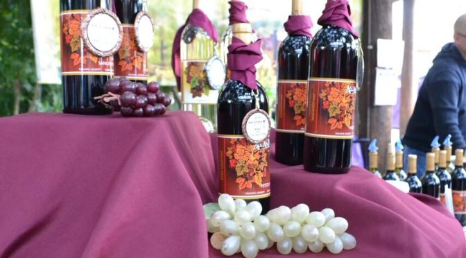 Arizona wines get all the attention at 9th Annual Grand Wine Festival