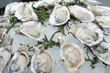 Oyster Shucking and a prix-fixe menu at Modern Oysterbar Chophouse