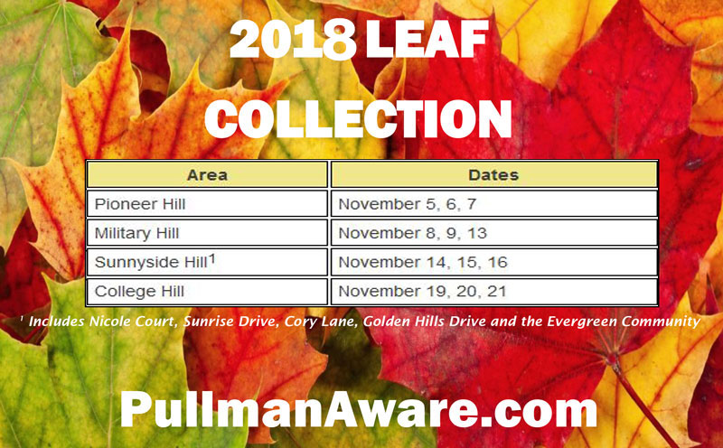 leaf-collection-2018