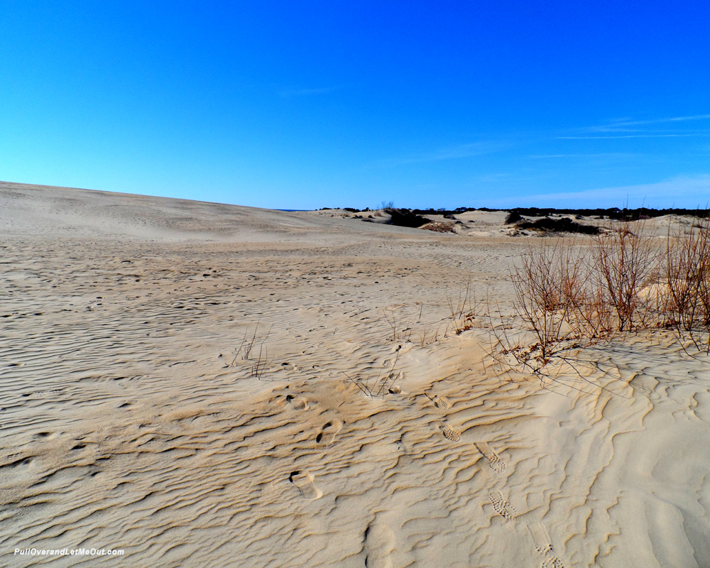 blue-skies-over-dunes