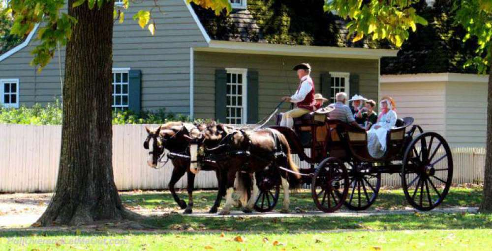 Horse-and-carriage---PullOv