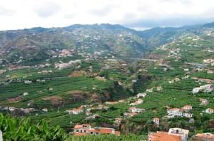 Madeira countryside