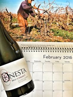 Feb 2016 Lodi Wine