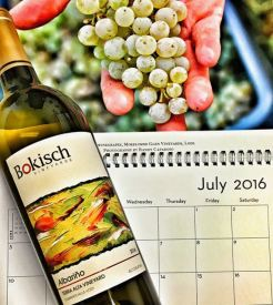 July 2016 Lodi Wine