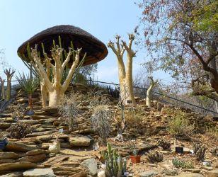 National Botanic Garden Windhoek
