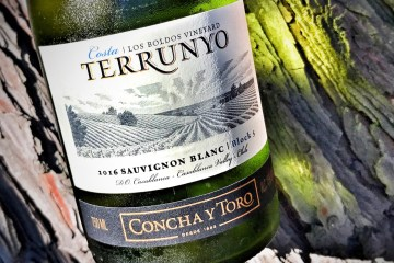 Terrunyo Sauvignon Blanc Featured