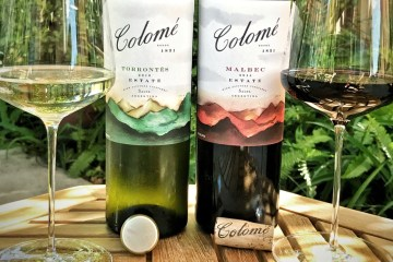 Colome Wines Featured
