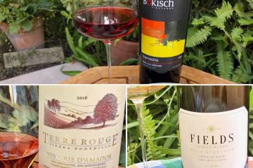 Grenache Day featured photo