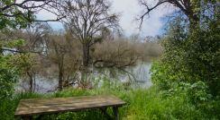 Heritage Oak flooding