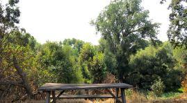 Heritage Oak picnic table