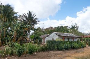 Farmhouse in cuba
