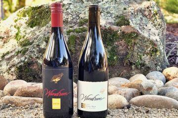 Windrun Pinot Noir featured photo