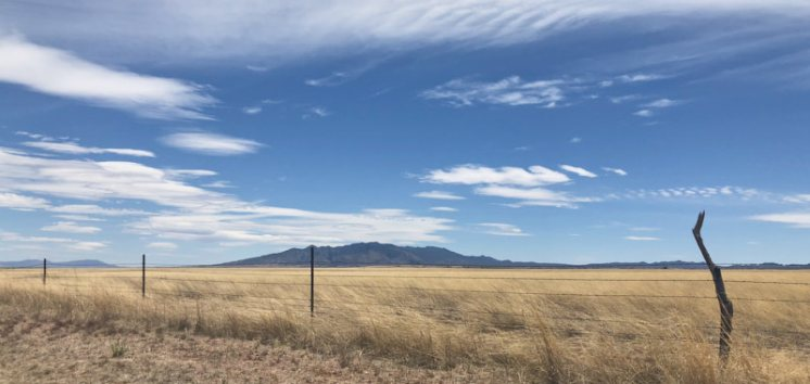 Sonoita grasslands