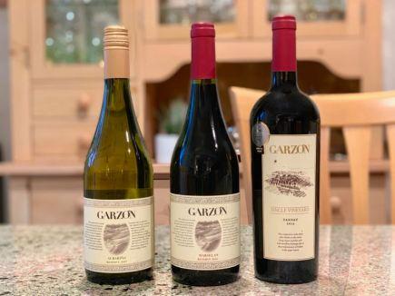 A Selection of Bodega Garzón Wines