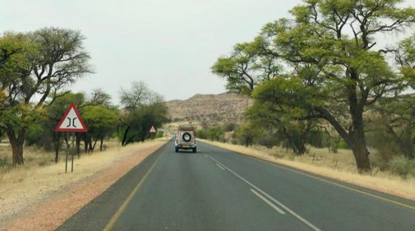 Forested area along the B1 Highway, Namibia