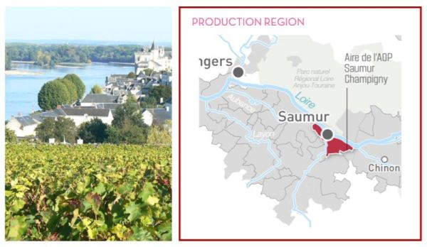 Image and Saumur Champigny Map from Loire Valley Wines
