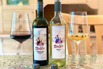 Stella wines featured photo