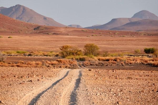 Follow the road