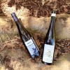 German Riesling featured photo