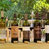 Wines of Alentejo WASP wines featured photo