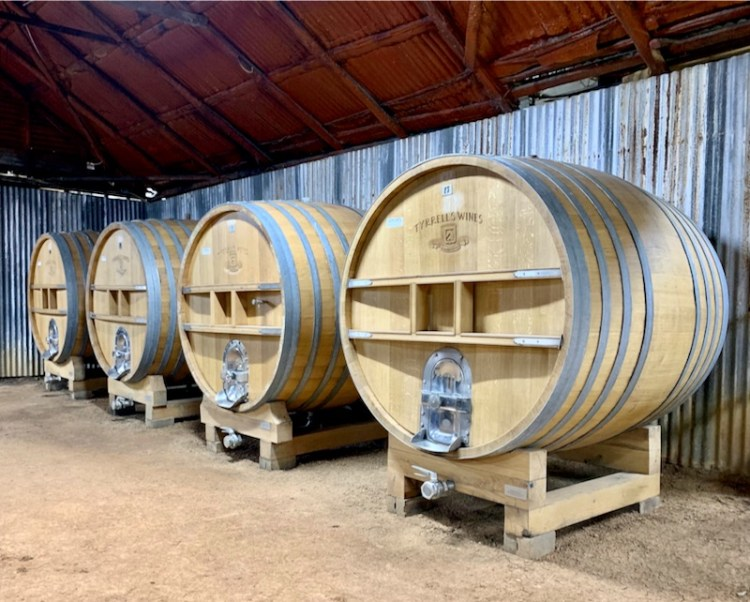 Large format oak barrels in the winery at Tyrrell's Wines photo