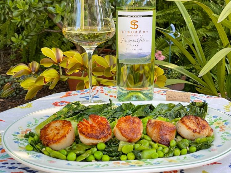 Seared scallops with spring vegetables with St. Supéry Sauvignon Blanc photo