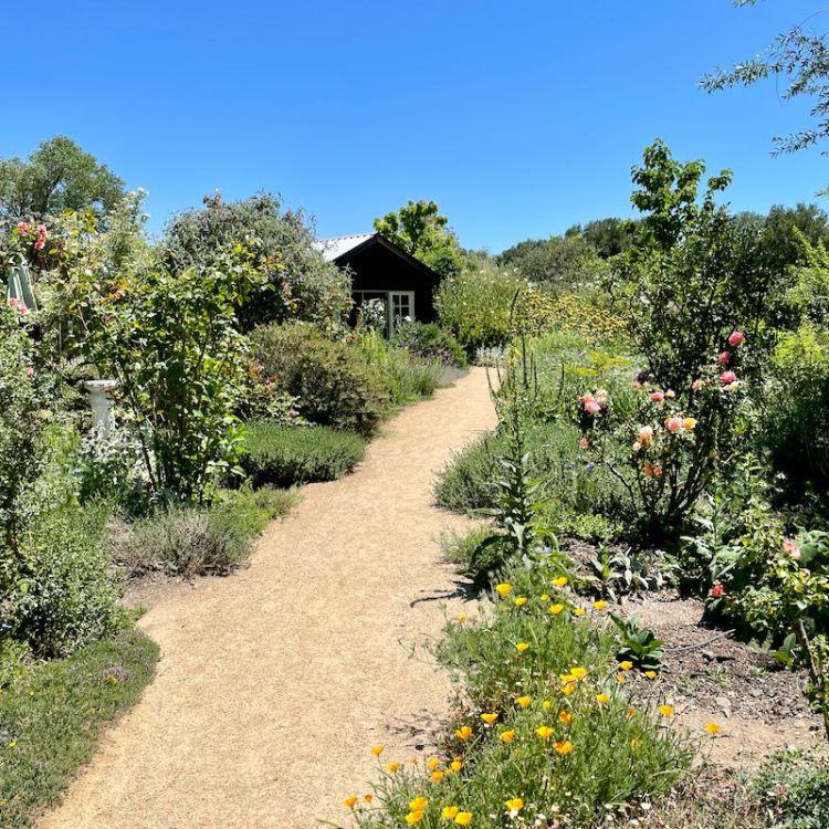 DaVero gardens photo