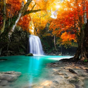 Waterfall in autumnal forest