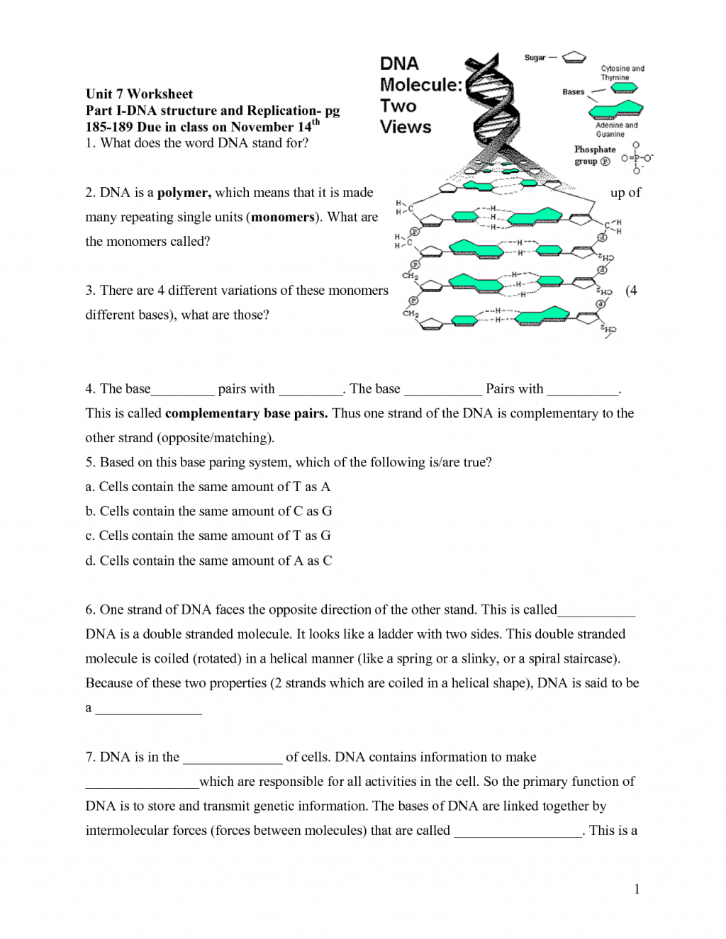 6 Rna Worksheet Biological Science Picture Directory